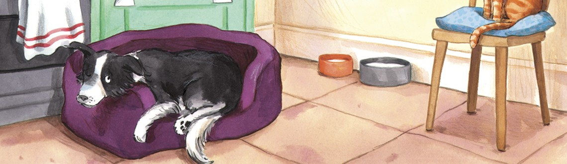 Hannah George Its a Dog's Life News Feature Image
