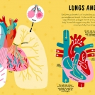 Ana Seixas Human Body News Item